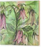 Harebell Wood Print