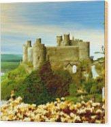 Harlech Castle Wood Print