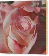 Harlekin Rose Wood Print