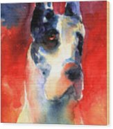Harlequin Great Dane Watercolor Painting Wood Print by Svetlana Novikova