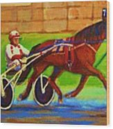 Harness Racing At Bluebonnets Wood Print