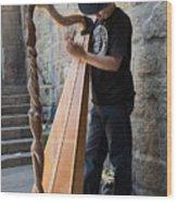 Harpist Street Musician, Barcelona, Spain Wood Print