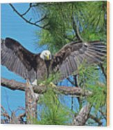 Harriet As I Open Wings Magics Happen Wood Print