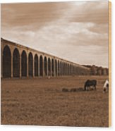 Harringworth Viaduct And Horses Grazing Wood Print