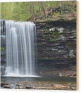 Harrison Wright Falls Spring Wood Print
