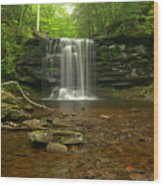 Harrison Wrights Falls In The Forest Wood Print