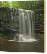 Harrison Wrights Forest Falls Wood Print