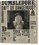 Harry Potter And The Half-blood Prince 2009 Wood Print
