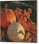 Harvest Colors Wood Print by Sandra Cunningham