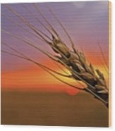 Harvest Sunset Wood Print