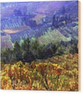 Harvest Time At The Vineyard Wood Print