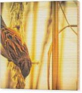 Harvest Time II Wood Print