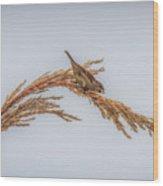 Harvest Time IIi Wood Print
