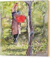 Harvesting Anna's Grapes Wood Print