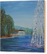 Harveston Lake Fountain Wood Print