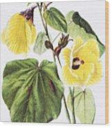 Hau Flower Art Wood Print