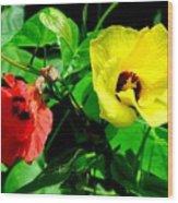 Hau Tree Blossoms Wood Print