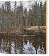Haukkajoki 1 Wood Print