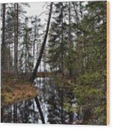 Haukkajoki Wood Print