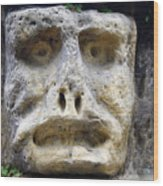 Haunted Stone Heads Wood Print