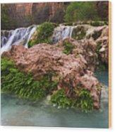 Havasu Creek Grand Canyon 14 Wood Print