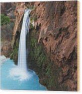 Havasu Falls Grand Canyon 1 Wood Print