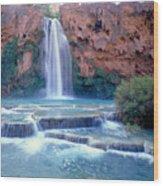 Havasu Falls - Grand Canyon Wood Print