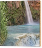 Havasu Falls Travertine Ledge Wood Print