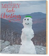Have A Very Merry Christmas Wood Print