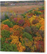 Havenwoods State Forest Wood Print