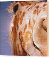 Havin-a-giraffe Wood Print