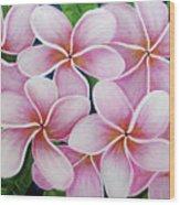 Hawaii An Tropical Plumeria Flower #338 Wood Print