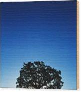 Hawaii Koa Tree Wood Print