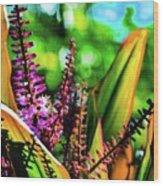 Hawaii Ti Leaf Plant And Flowers Wood Print