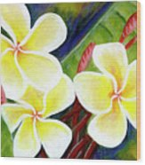 Hawaii Tropical Plumeria Flower #298, Wood Print