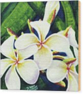 Hawaii Tropical Plumeria Flowers #160 Wood Print