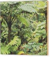 Hawaii Tropical Rainfores Wood Print