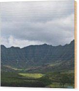 Hawaii Valleys Wood Print