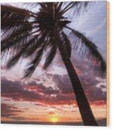 Hawaiian Coconut Palm Sunset Wood Print by Dustin K Ryan