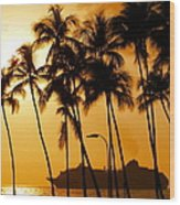 Hawaiian  Cruise Wood Print