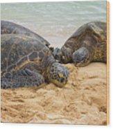 Hawaiian Green Sea Turtles 1 - Oahu Hawaii Wood Print
