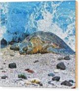 Hawaiian Green Turtle Honu Wood Print