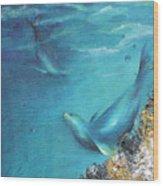 Hawaiian Monk Seals Wood Print