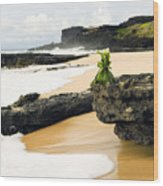 Hawaiian Offering On Beach Wood Print