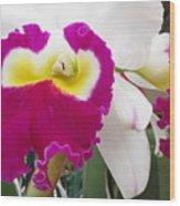Hawaiian Orchid 4 Wood Print