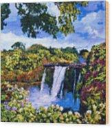 Hawaiian Paradise Falls Wood Print by David Lloyd Glover
