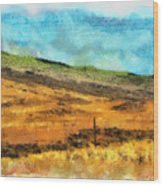 Hawaiian Pasture Wood Print