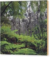 Hawaiian Rainforest Wood Print