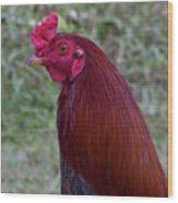 Hawaiian Rooster Wood Print