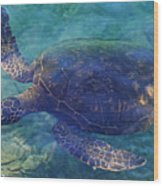 Hawaiian Sea Turtle Wood Print